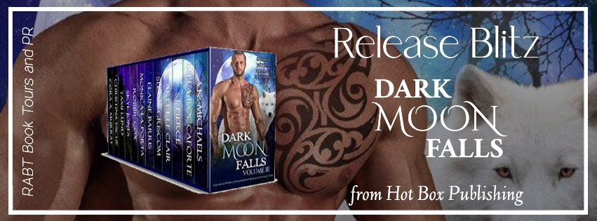 Dark Moon Falls banner