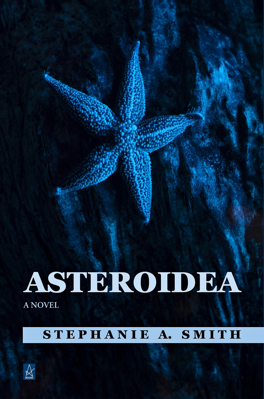 Asteroidea cover