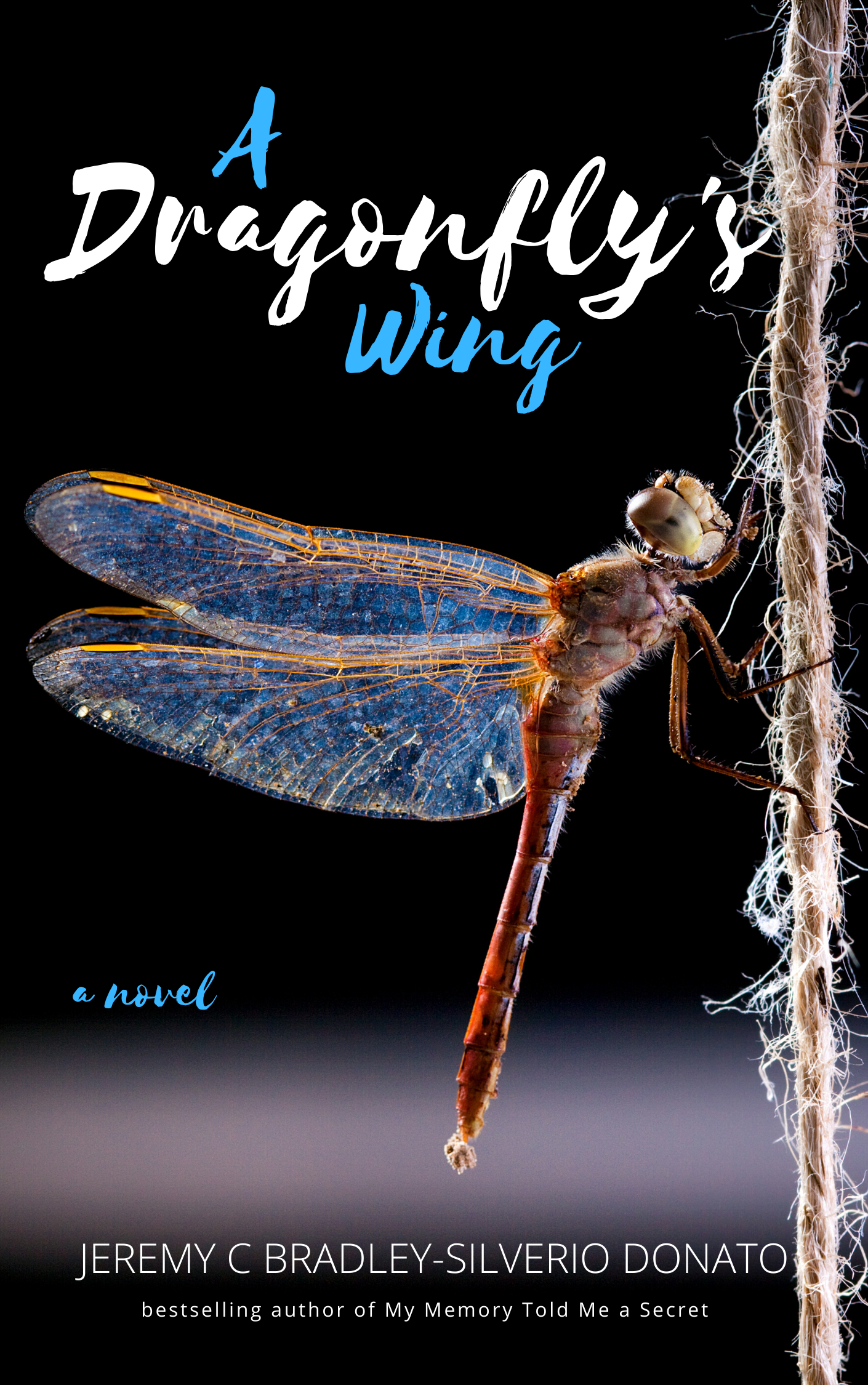 A Dragonfly's Wing cover
