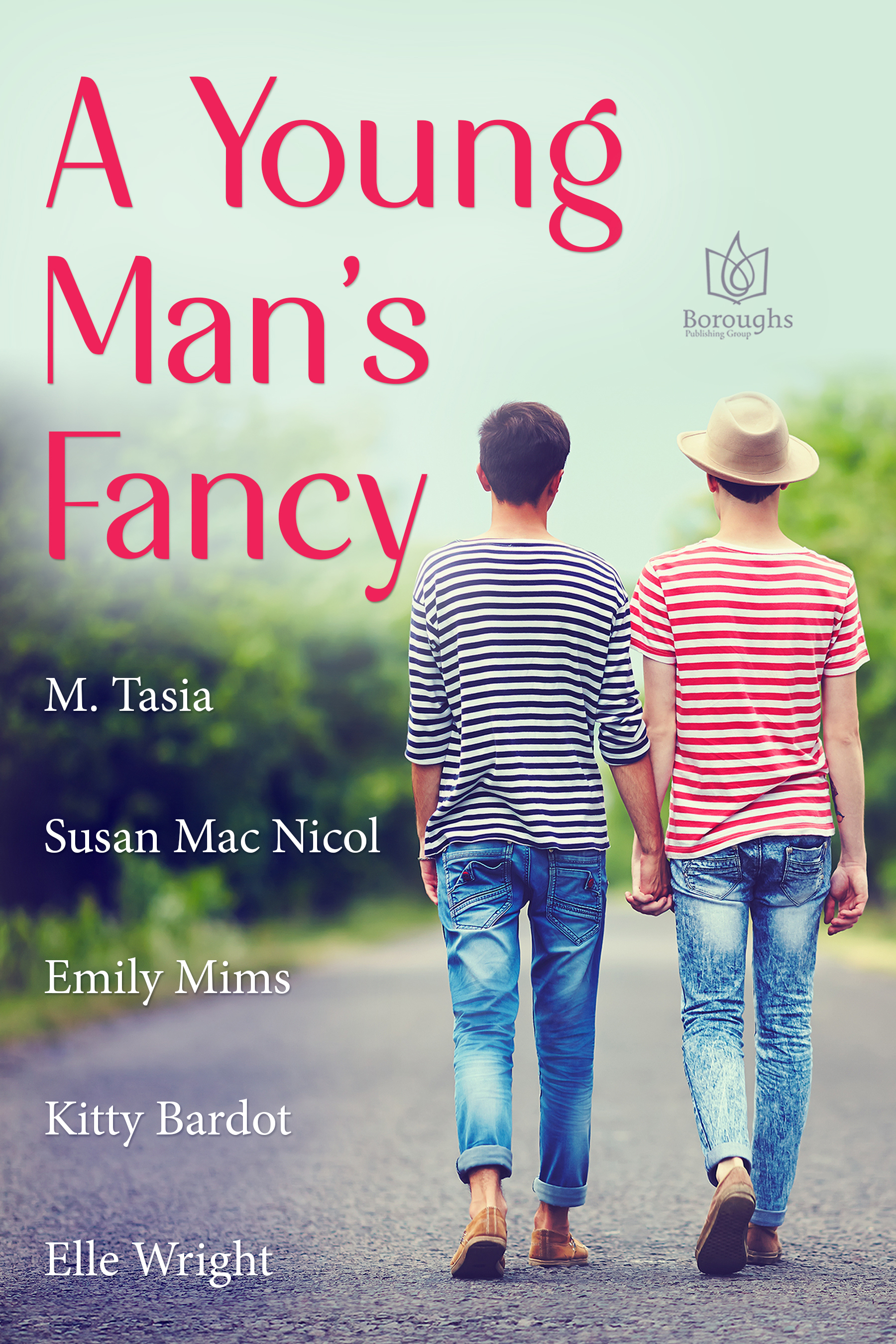 A Young Man's Fancy cover