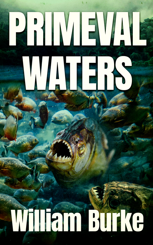 Primeval Waters cover
