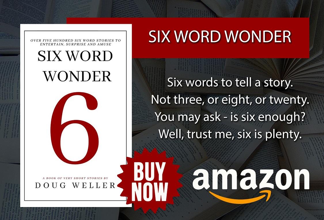 Six Word Wonder buy now