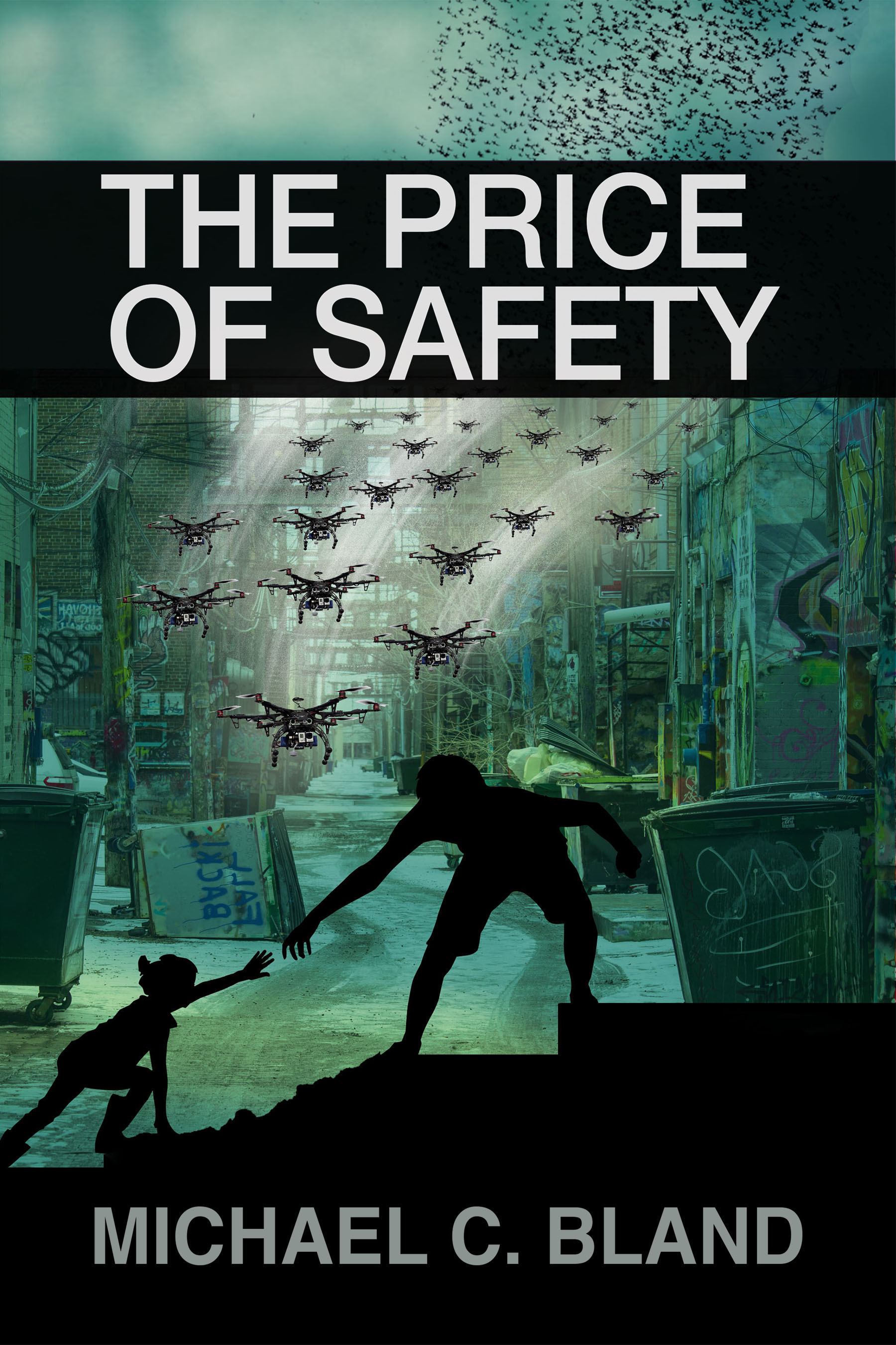 The Price of Safety cover