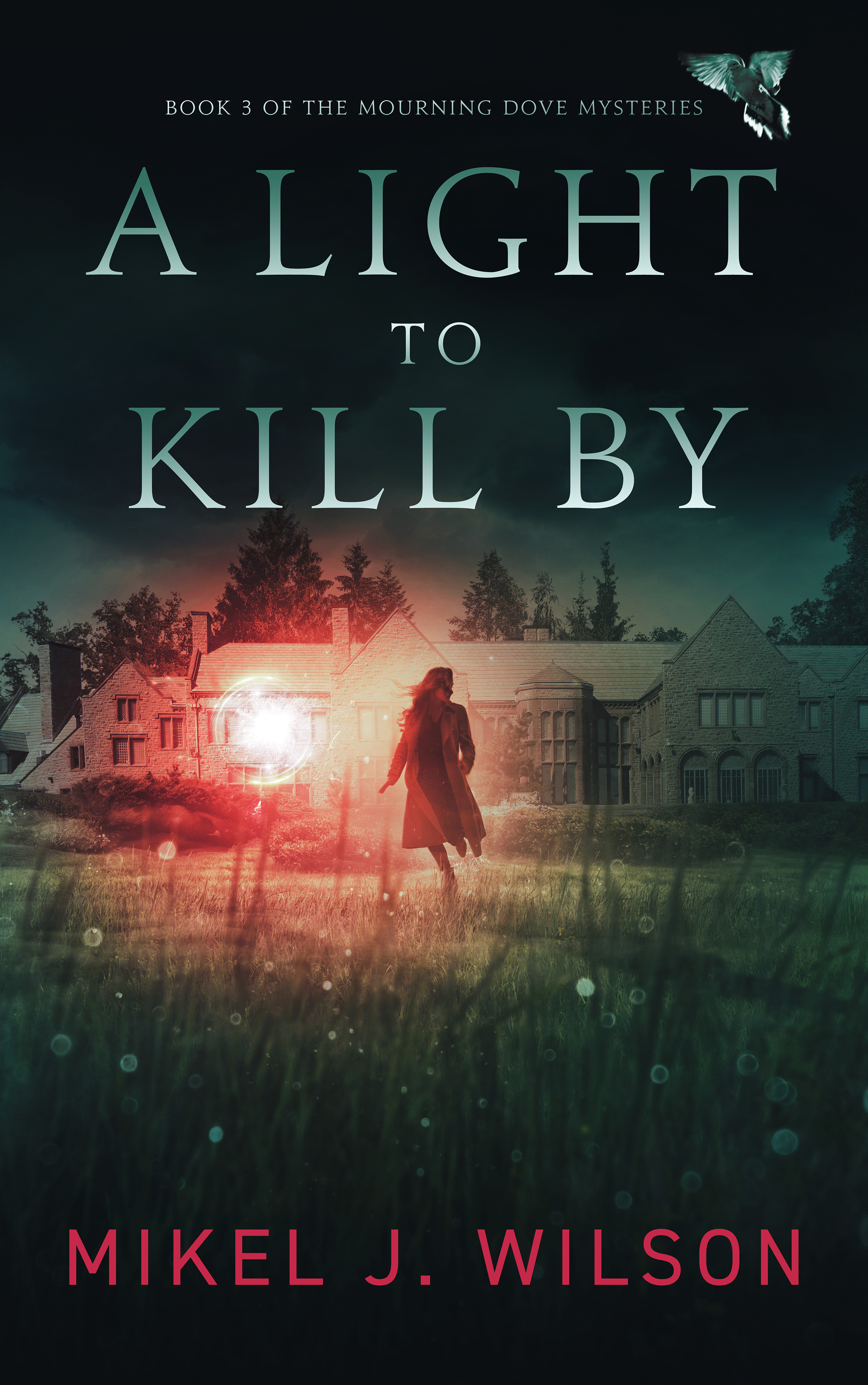 A Light to Kill By cover
