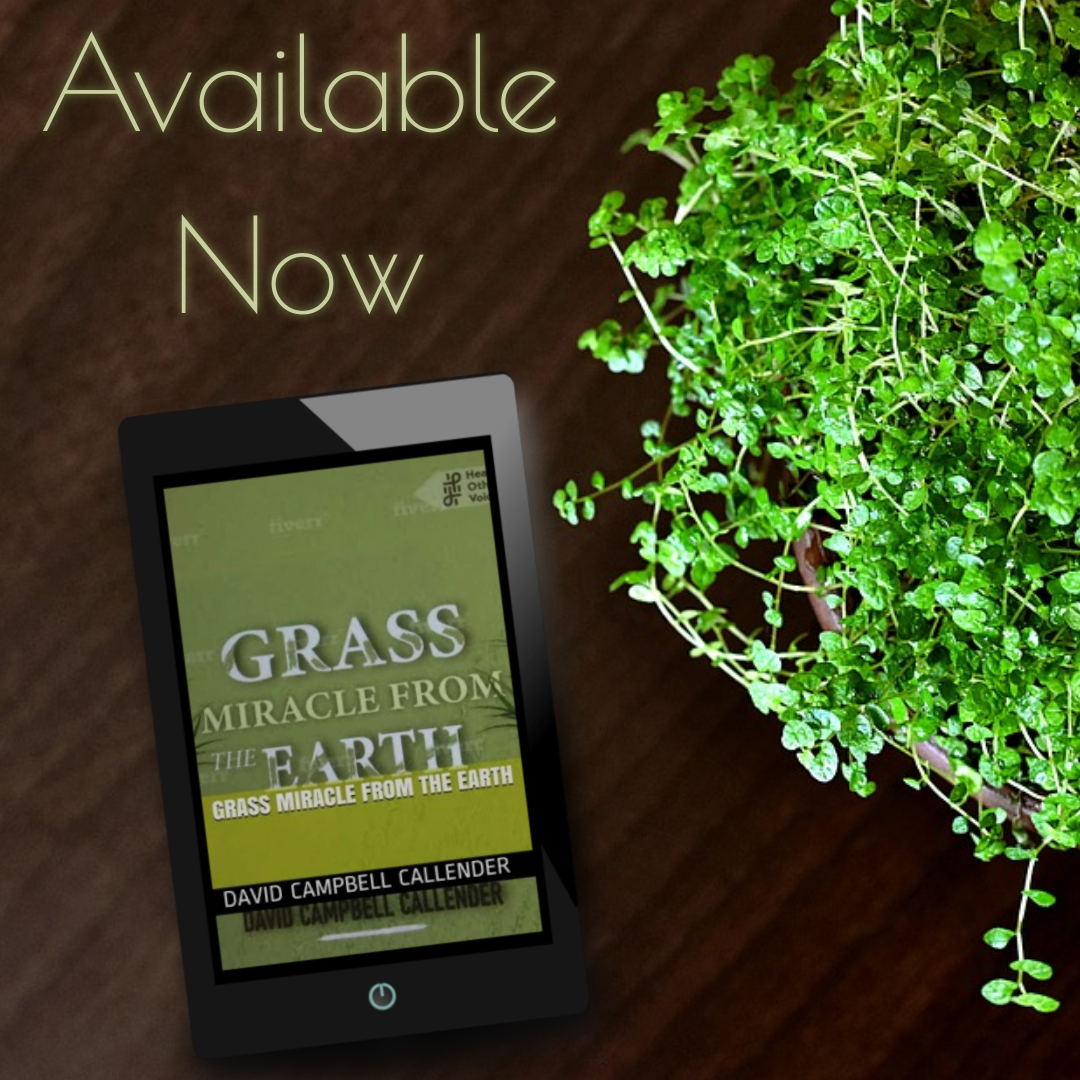 Grass Miracle From the Earth tablet