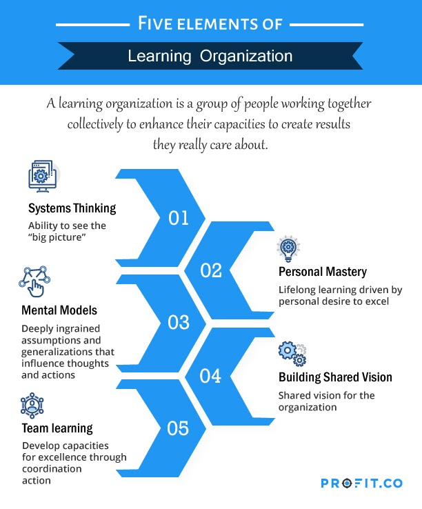 5-elements-of-learning-organization