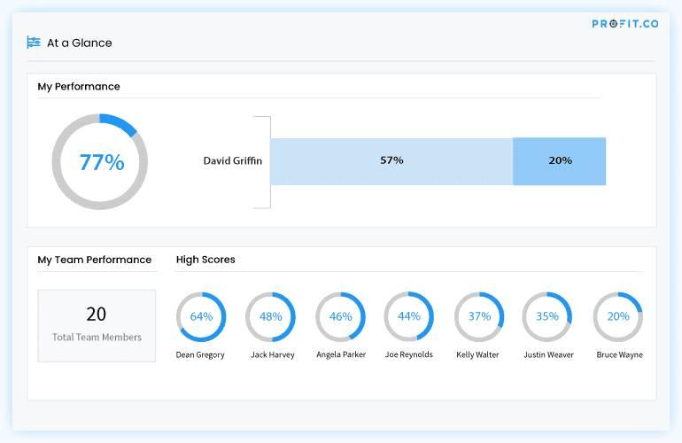 Profit-performance-dashboard