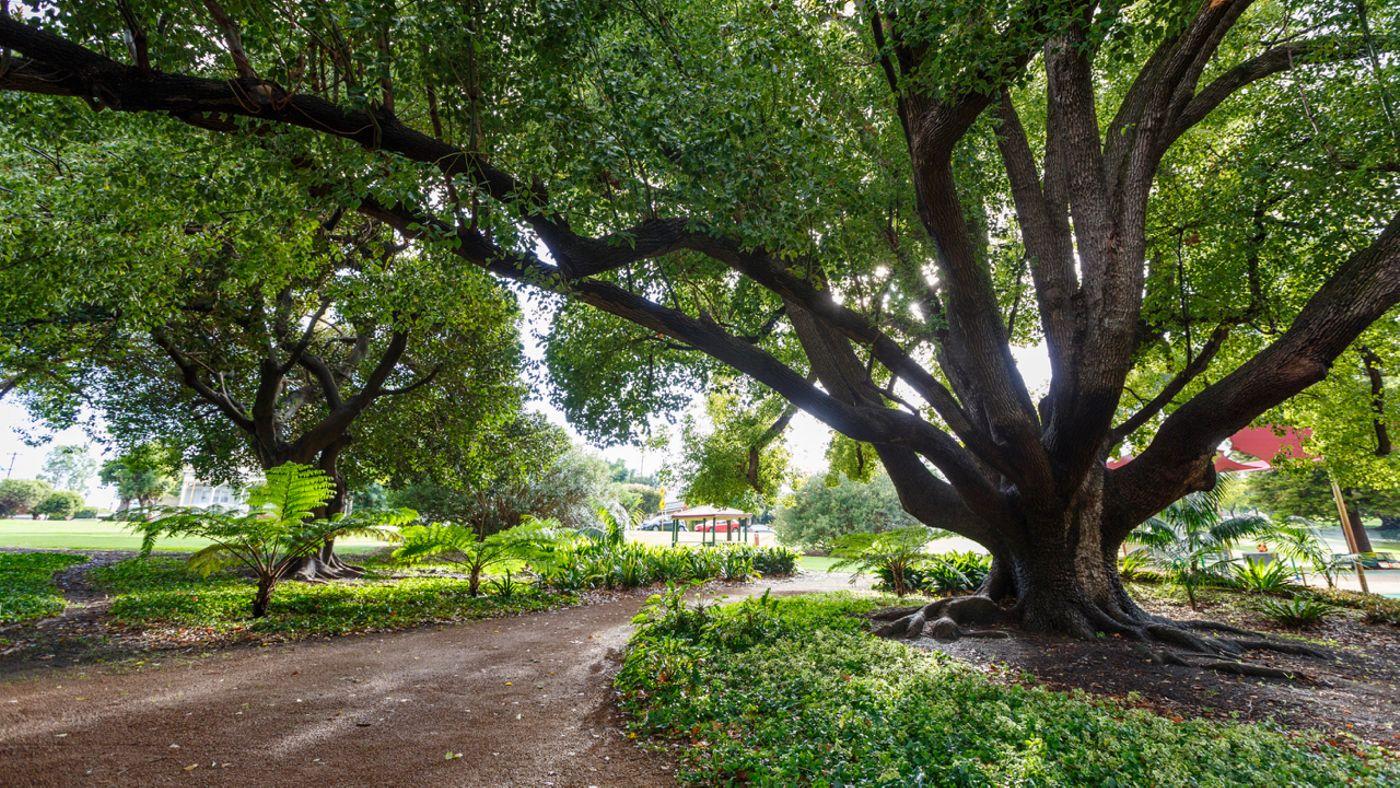 Hyde Park (HP16 - Gazebo) - North Perth, Western Australia