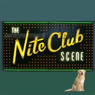 main photo of NIGHTCLUB #1 - Nite Club