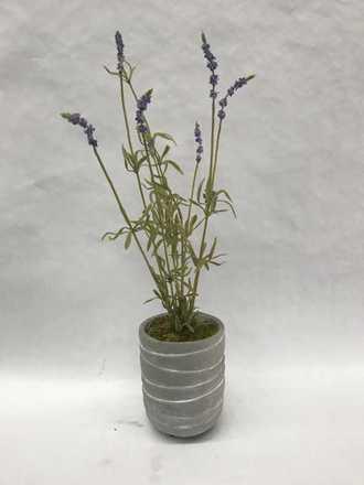 main photo of Silks Greens Flowers