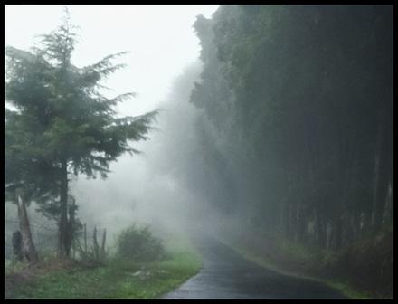 main photo of KIMVAL-Hawaii Weather 4