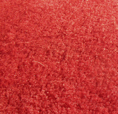 main photo of Carpet -Red- 12x15