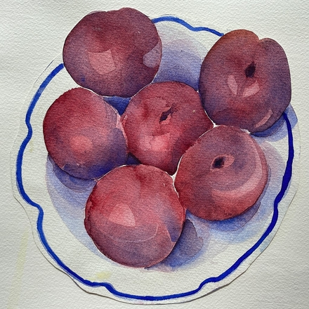 main photo of EVEJUD-Plums DF