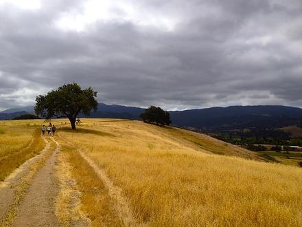 main photo of Path
