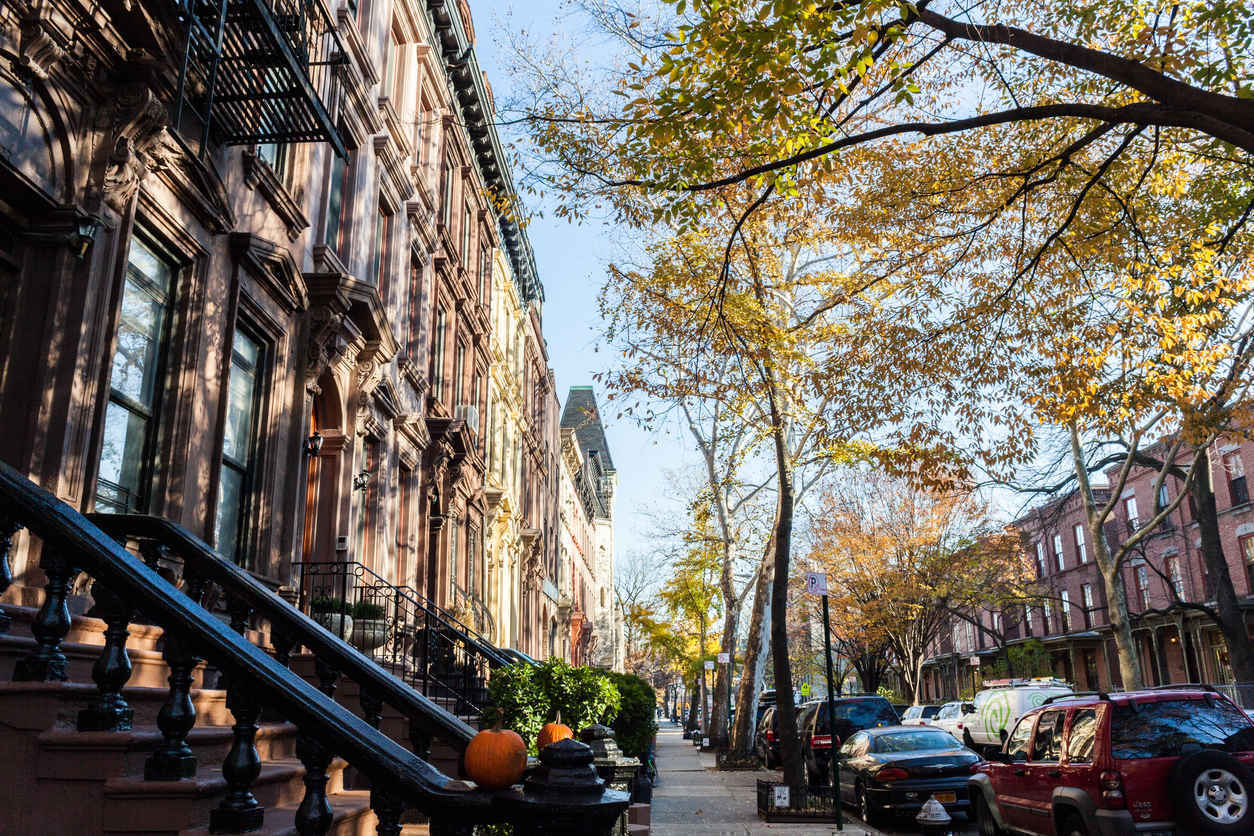Tree-lined street in Harlem New York
