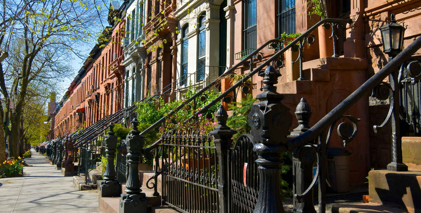 Row houses on tree-lined street in Park Slope Brooklyn