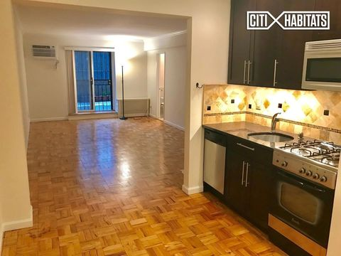 1420 York Avenue, Apt 2-L, Manhattan, New York 10021