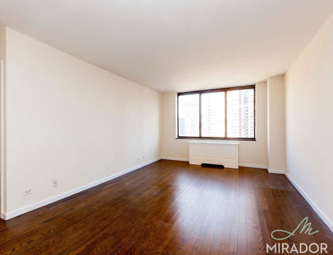 245 East 44th Street, Apt 24A, Manhattan, New York 10017
