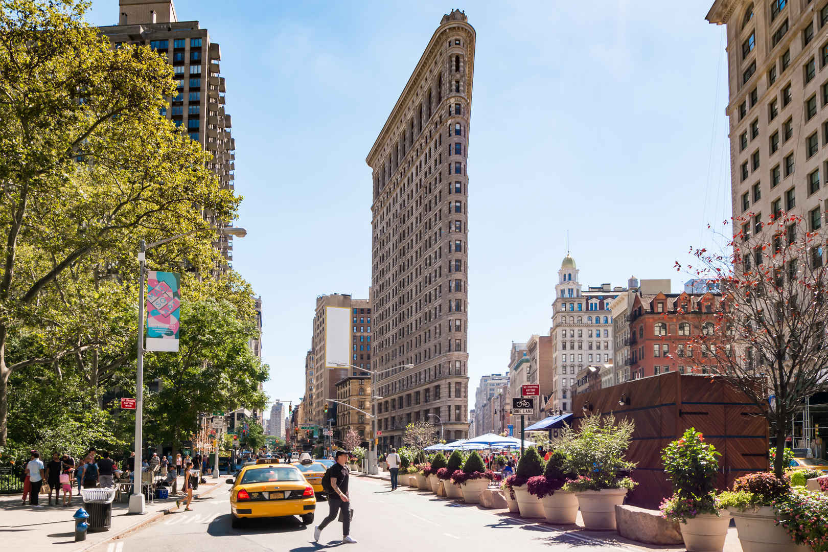Tree-lined street in Flatiron District, New York City