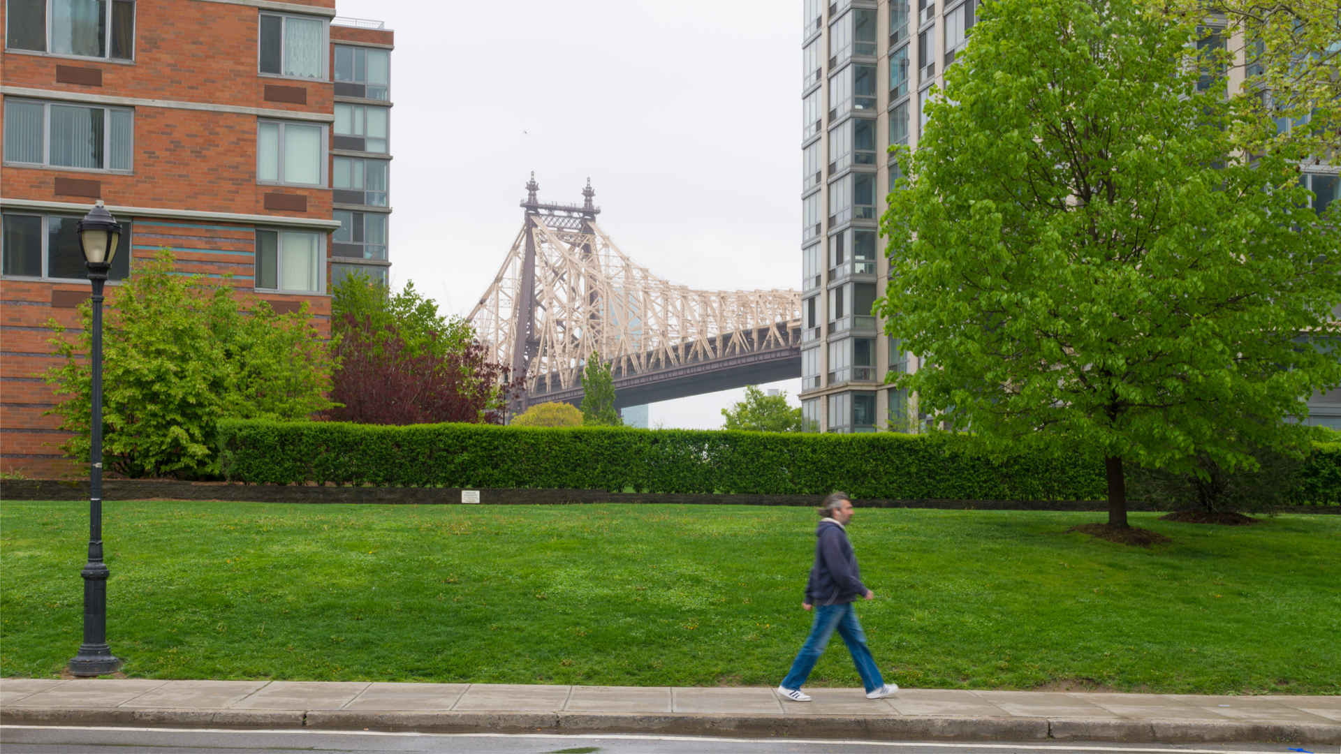 Roosevelt Island street with the Queensboro Bridge in the background