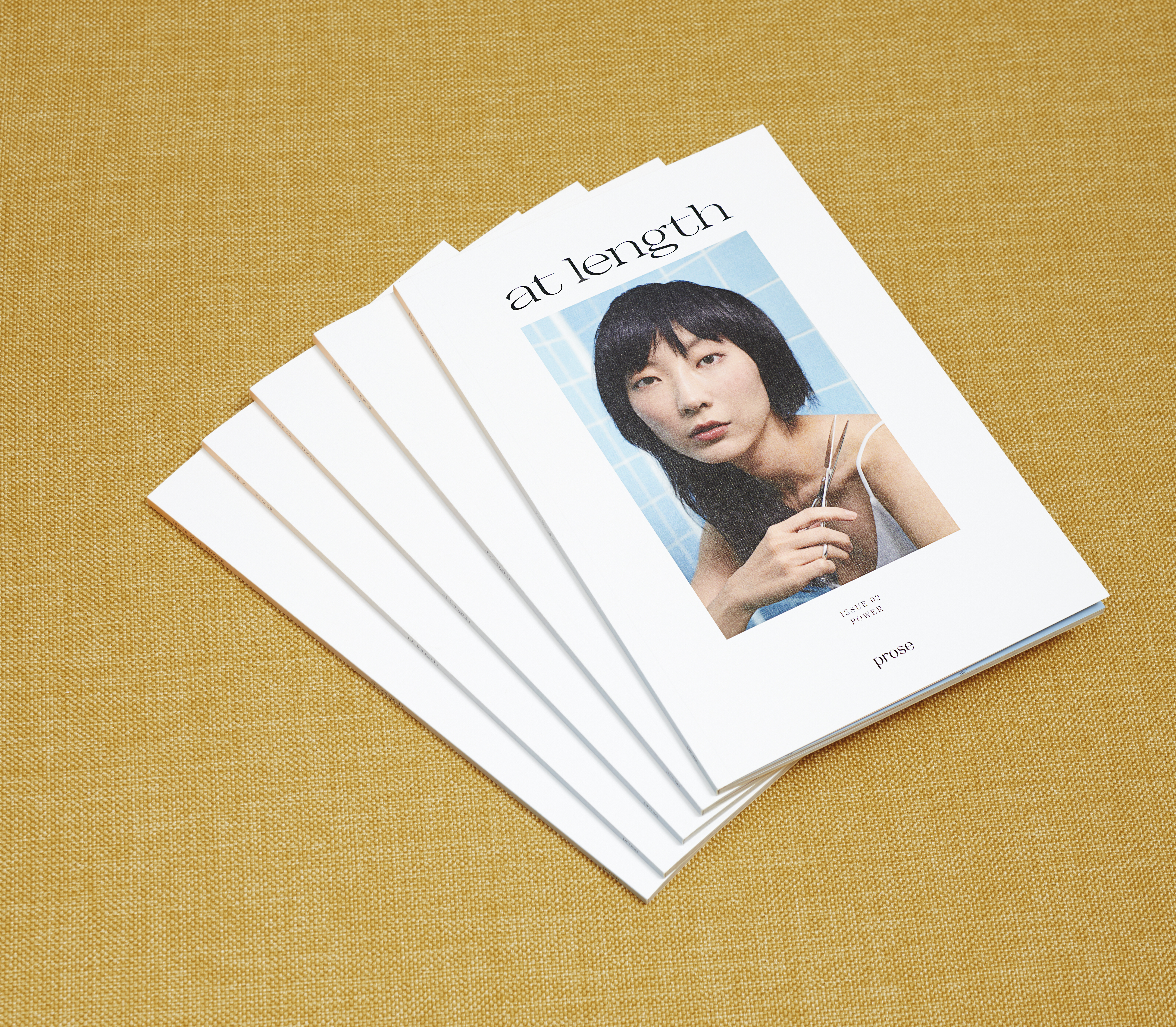 prose magazine at length power issue