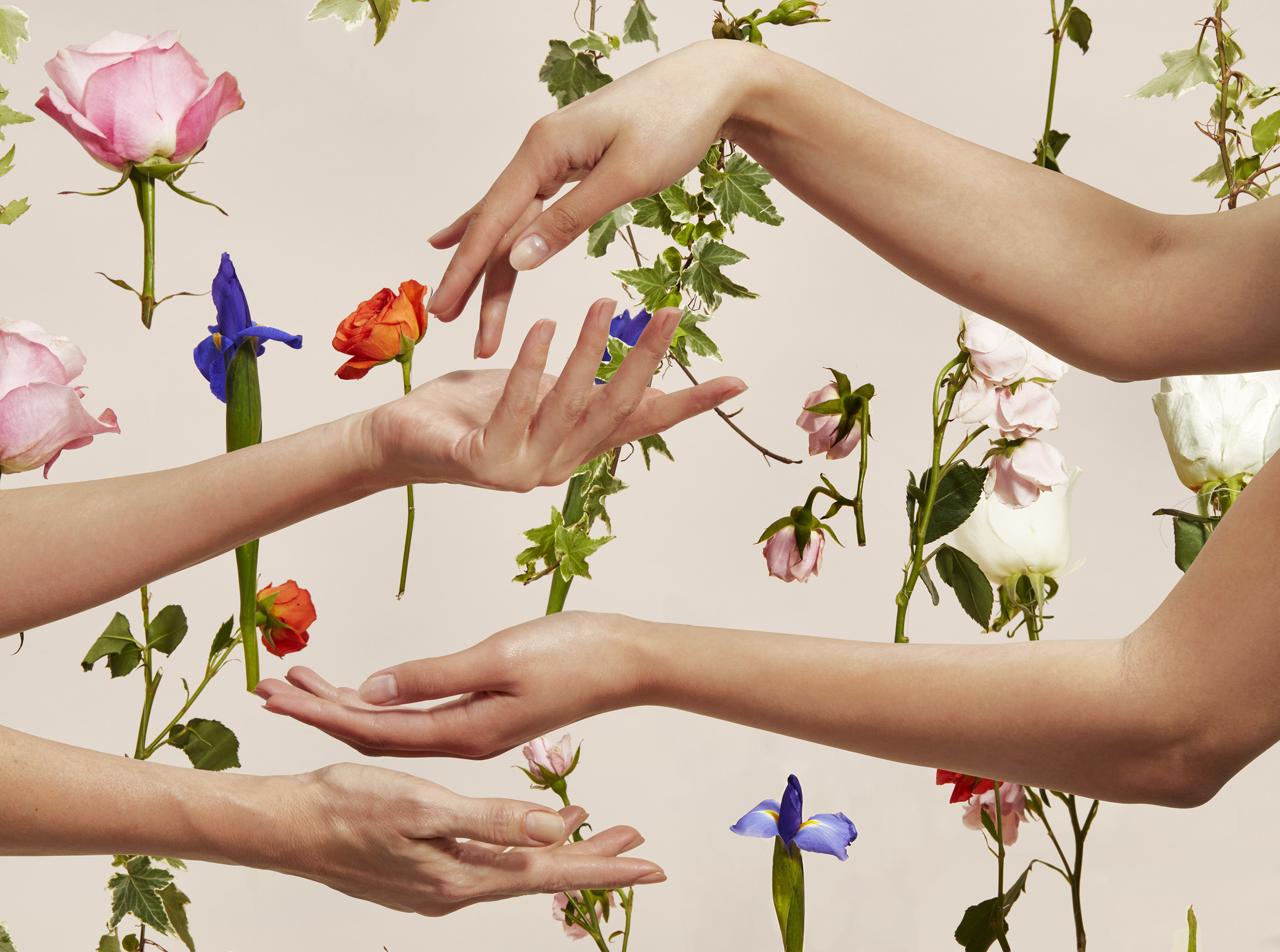 hands in front of a flower background