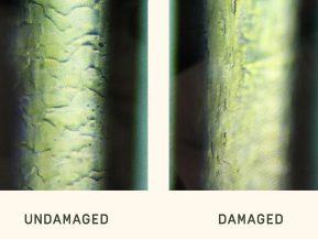 hair-damage.v1 copy
