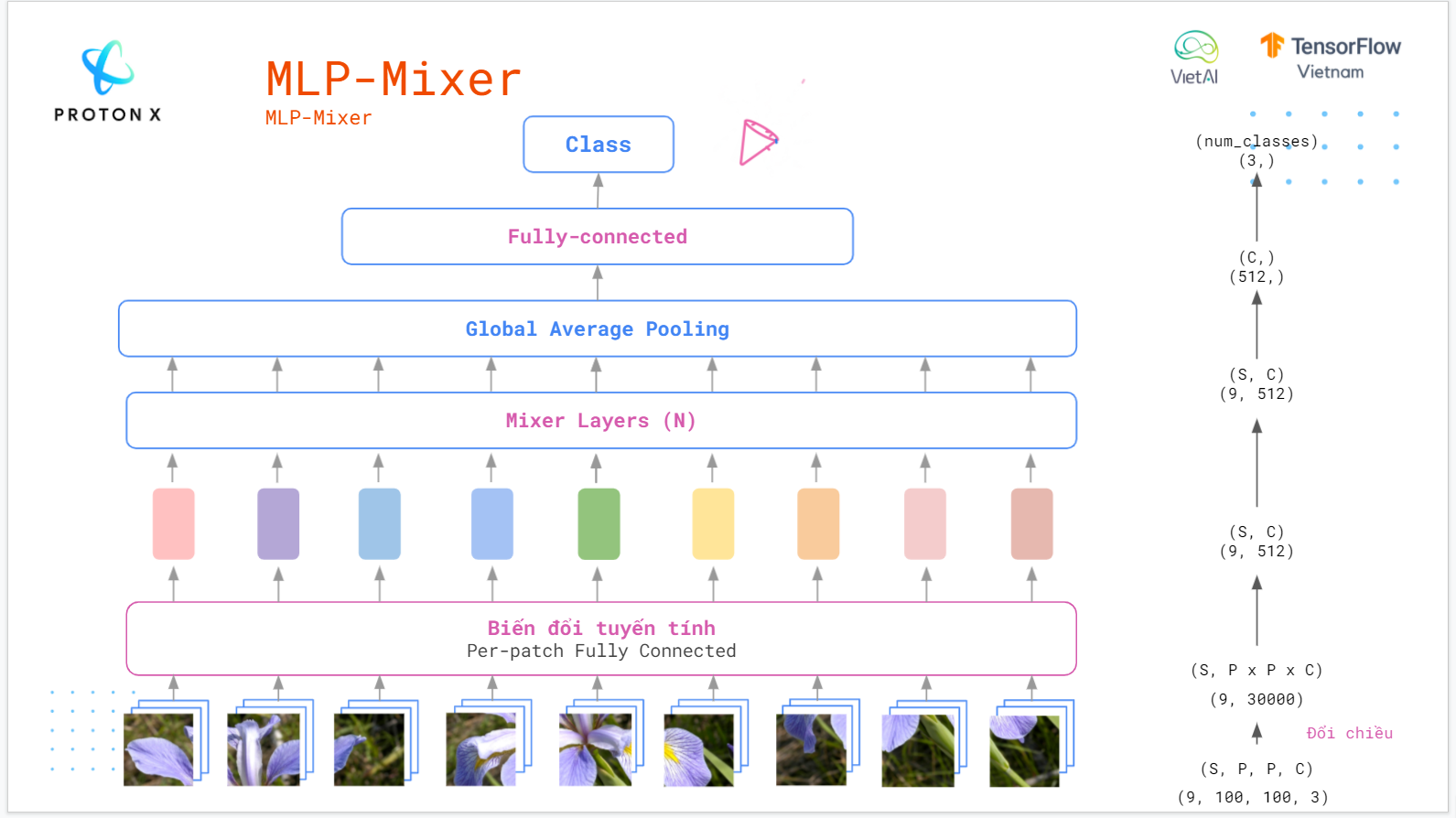 mlp-image