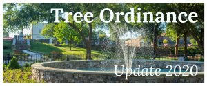 Tree Ordinance Update