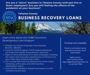 Business Recovery Loan Program