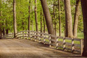Endicott Park Fenceline