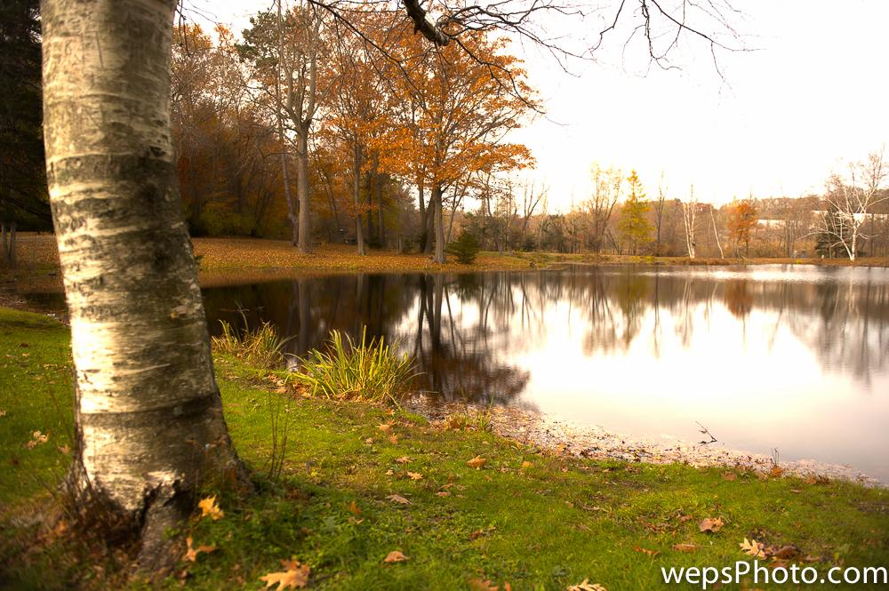Endicott Park Pond Photo in Fall