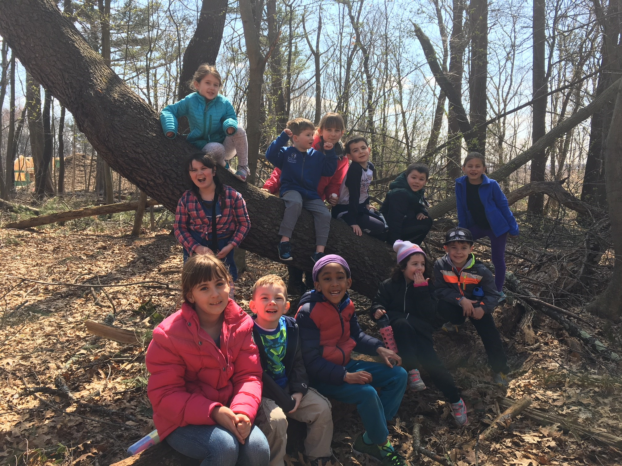 Group of kids sitting on a sloping tree trunk and on a log in the woods