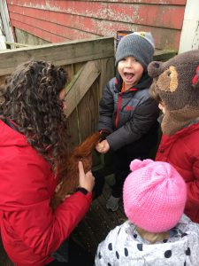 Little Explorers Petting a Hen
