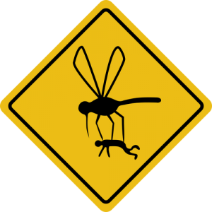 Caution: Mosquitoes