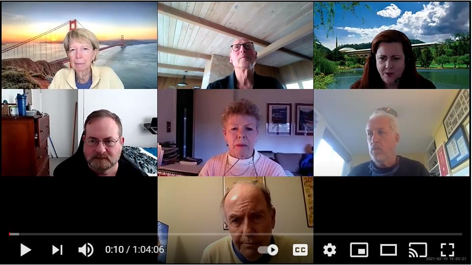 screenshot of the virtual work group meeting