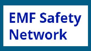 EMF logo