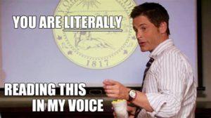 traeger voice