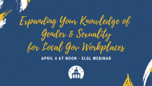 Gender and sexuality webinar