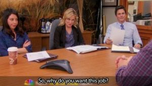 parks and rec why do you want this job