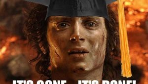 Frodo destroys the degree