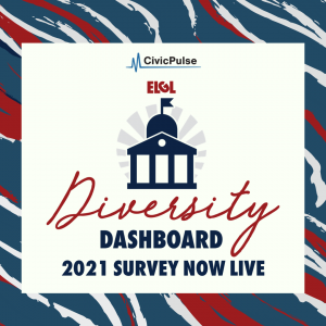 Diversity Dashboard Image
