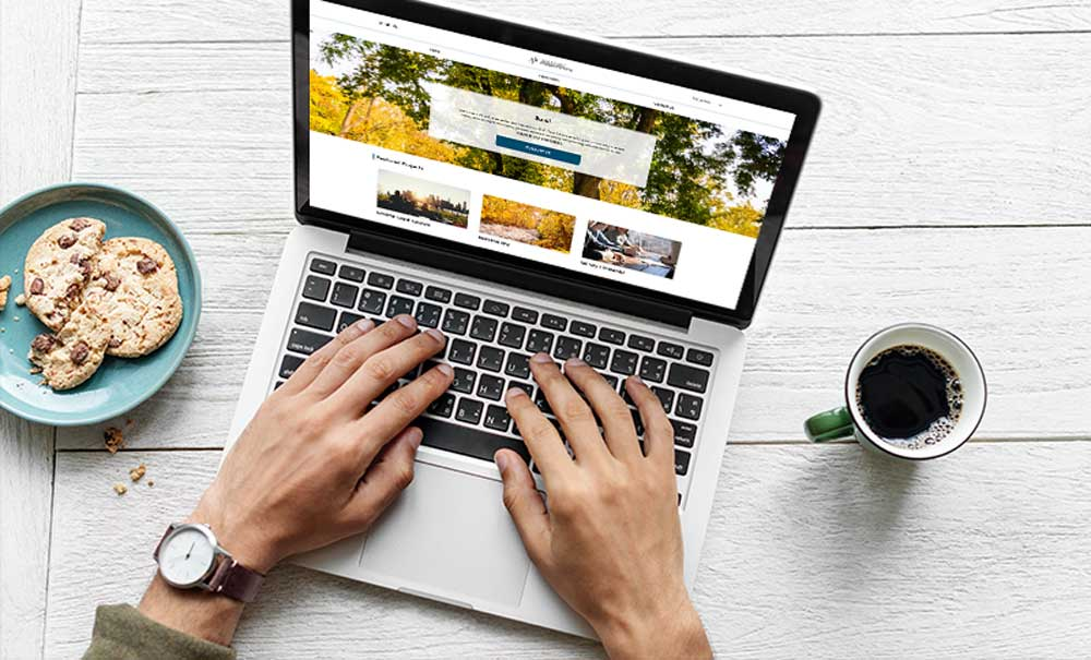 Photo of person's hands using laptop.