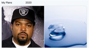 rapper ice cube and melted ice