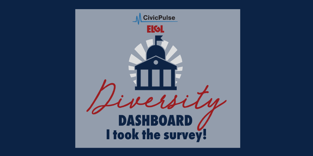 Diversity Dashboard I took the survey image