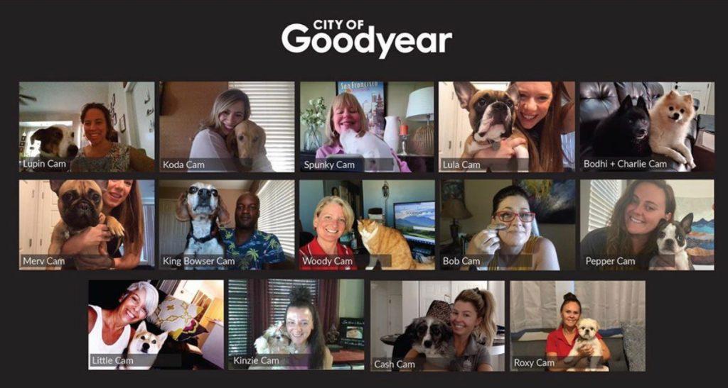 goodyear pets
