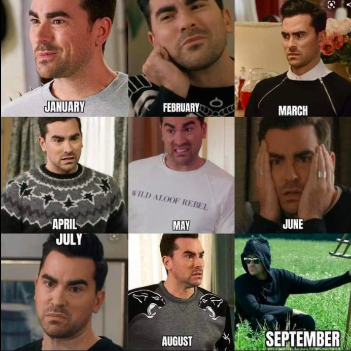 month-by-month mood for 2020, featuring David from Schitt's Creek