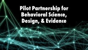 pilot partnership