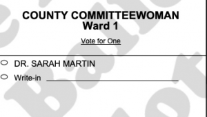 Snapshot of a ballot with the author's name on it