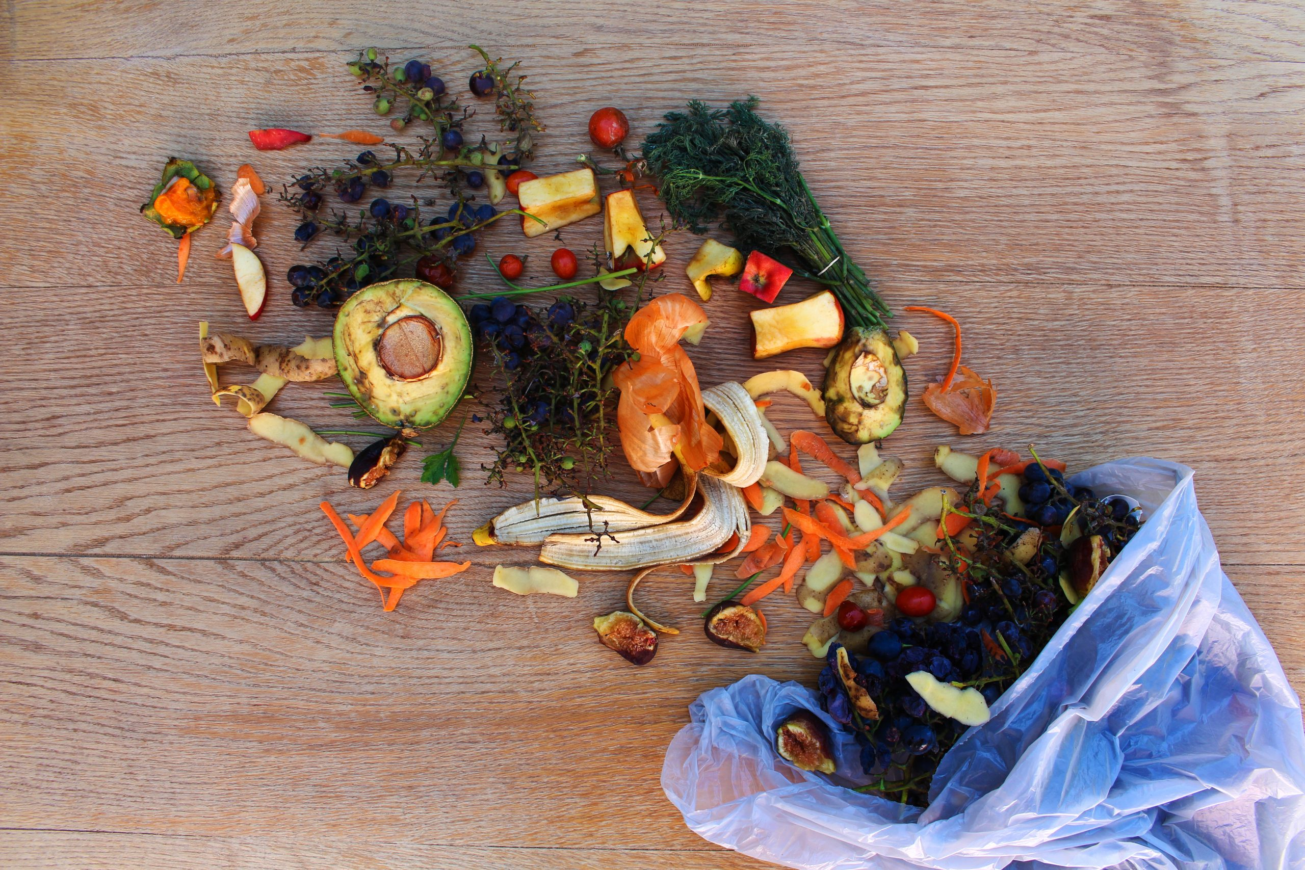 beautiful food waste image